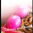 喜齋報喜禮盒(素油飯加蛋16兩) 建議售價:$160元 材料:糯米、沙拉油(100%大豆油)、香菇、素肉絲、大豆蛋白、小麥蛋白、玉米澱粉、碳酸鈣、偏亞硫酸氫鈉、栗子*3 過敏原警示:小麥、蛋 製造地:台灣 銷售方式:批發、零售 請洽客服專線 (07)353-6361 圖片僅供參考,產品以實物為準